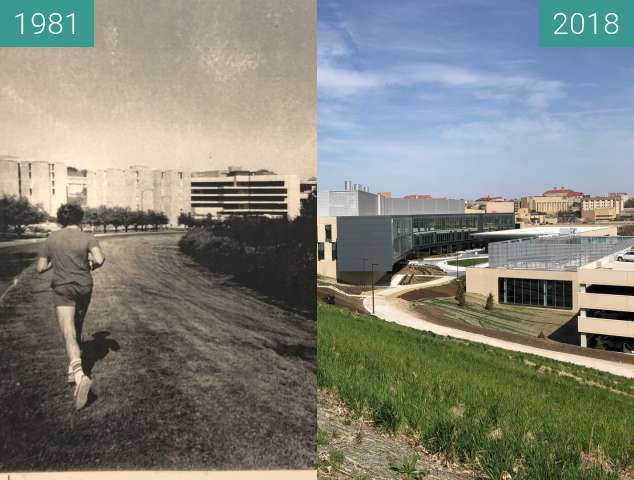 Before-and-after picture of Jogger down Daisy Hill between 1981 and 2018-Apr-17