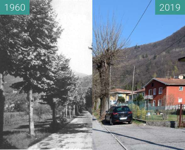 Before-and-after picture of Dumenza: Via Croce Campagna between 1960 and 04/2019