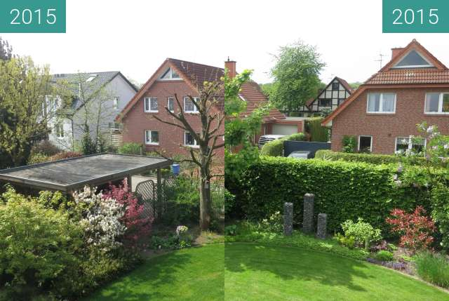 Before-and-after picture of Mein Freund, der Baum between 2015-Apr-24 and 2015-May-17