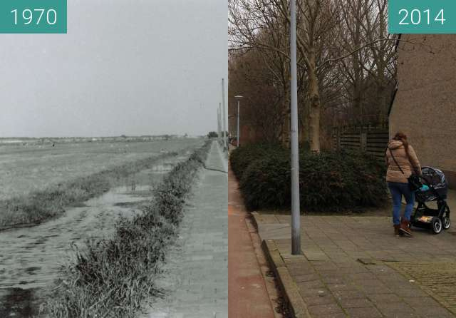 Before-and-after picture of Daalmeerpad Alkmaar between 1970 and 2014