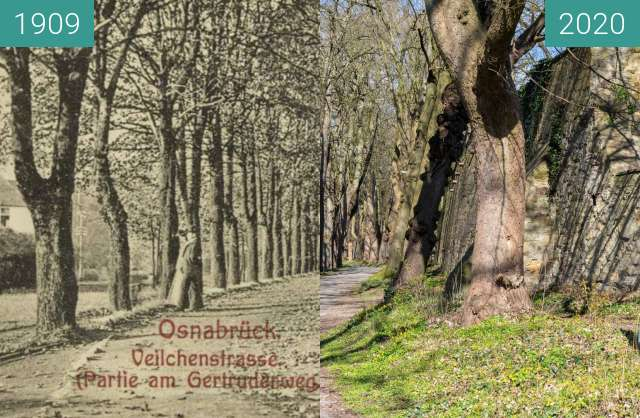 Before-and-after picture of Veilchenstrasse between 06/1909 and 03/2020