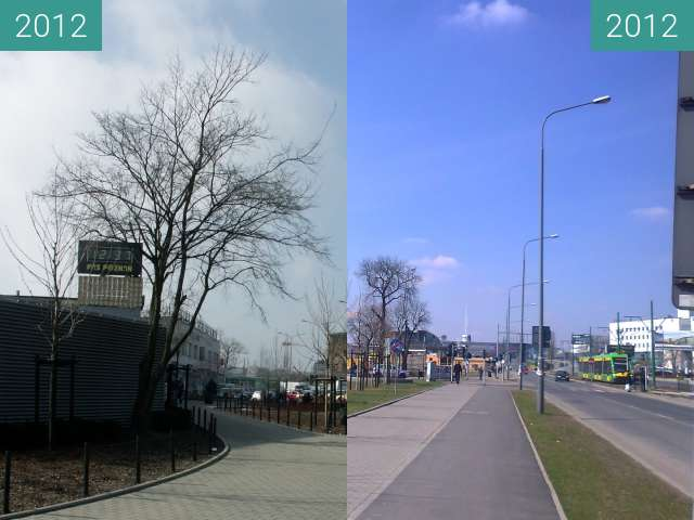 Before-and-after picture of Matyi between 2012-Mar-09 and 2012-Apr-06