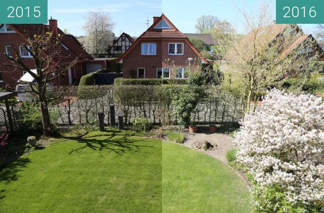 Before-and-after picture of Wachstum der Pflanzen between 2015-Apr-21 and 2016-Apr-21