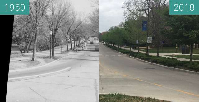 Before-and-after picture of Jayhawk Blvd from Chi Omega Fountain between 1950 and 2018