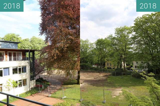 Before-and-after picture of Blutbuche am Heywinkelhaus between 2018-Apr-26 and 2018-Apr-27