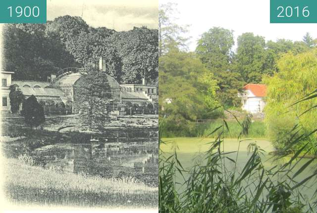 Before-and-after picture of Botanical Garden Münster between 1900 and 2016-Sep-02