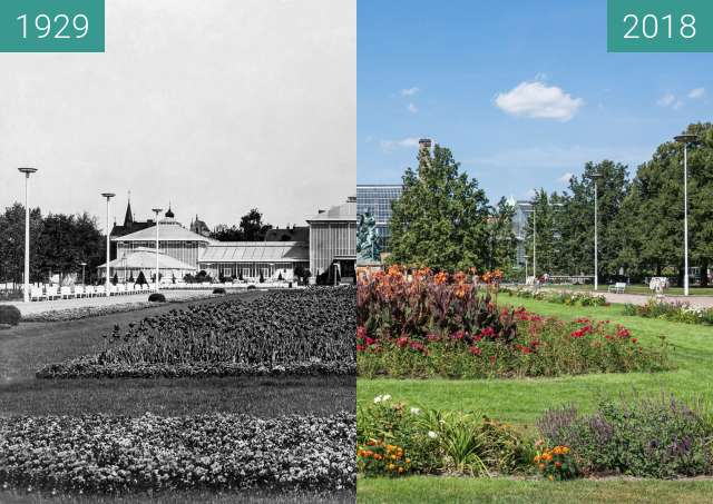 Before-and-after picture of Park Wilsona i palmiarnia between 1929 and 2018
