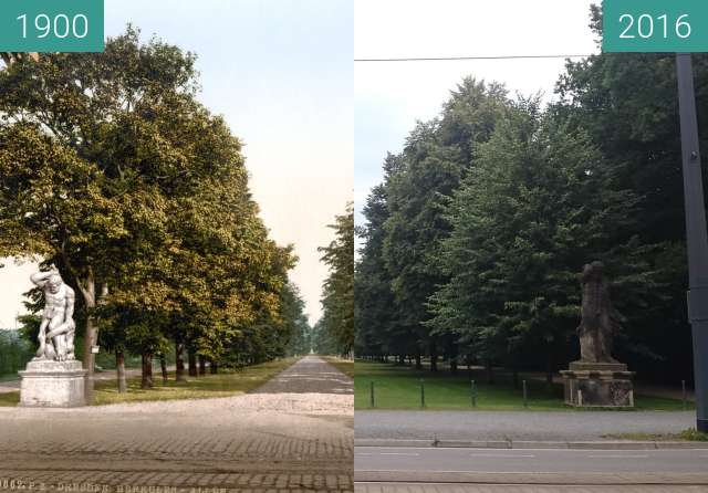 Before-and-after picture of Großer Garten Herkulesallee between 1900 and 2016-Jun-30