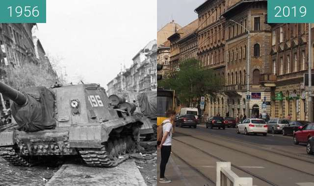 Before-and-after picture of revolution 1956 between 1956 and 2019-Apr-10