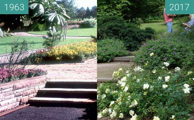 Before-and-after picture of Botanischer Garten between 1963 and 2017-Jun-18