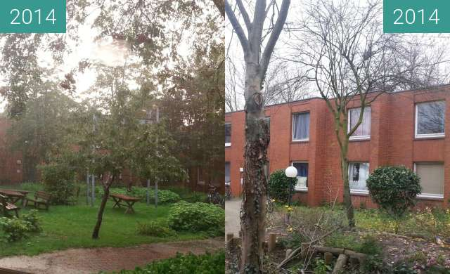 Before-and-after picture of Blick in den Innenhof (NW) des Wohnheims Jahnplatz between 2014-Aug-30 and 2014-Nov-27