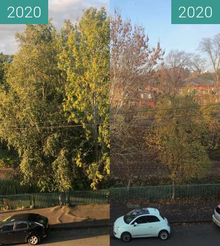 Before-and-after picture of Winter comes to Pollokshields between 2020-Sep-13 and 2020-Nov-07