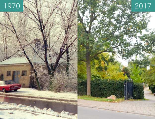 Before-and-after picture of Friedhof in Bobenheim-Roxheim between 1970 and 2017-Oct-08