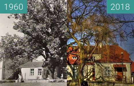 Before-and-after picture of Building between 1960 and 2018