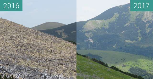 Before-and-after picture of Vranica between 2016-May-29 and 2017-Jul-09